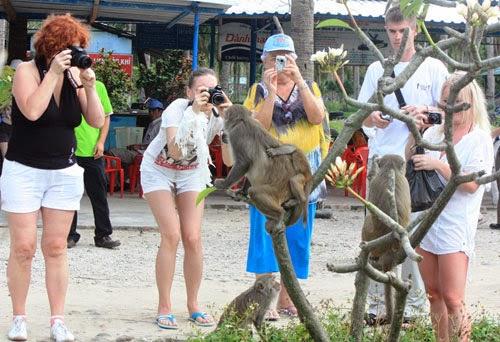 khách du lịch thoải mái khi đến đảo Khỉ