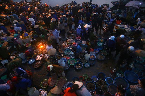 Chợ cá Hạ Long tấp nập vào sáng sớm