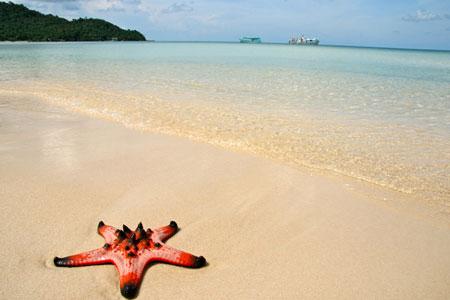 Bãi cát trải dài đẹp mê hồn của Bãi Sao trên đảo Phú Quốc